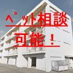 No.009-2F 敷金・礼金ゼロ! 玉津2LDKマンション