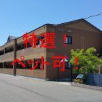 No.036 豊後高田 1K RCマンション  家電相談可!
